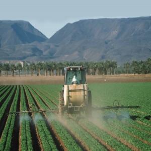Global Biorational Product Market