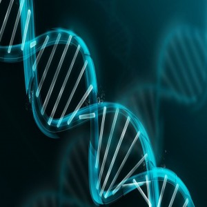 Global Next Generation Sequencing(NGI) market