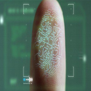 Global fingerprint sensor market