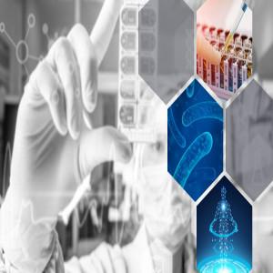 Microbiome Therapeutics in Cancer Treatment